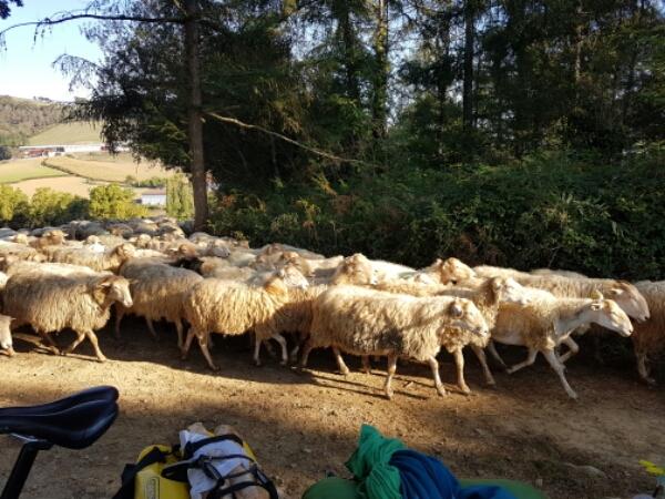Tour d europe de voorbereiding annelyse - Europ camping st jean pied de port ...