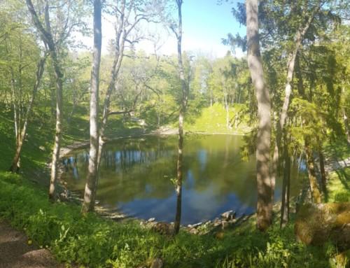 Eilandhoppen naar Saaremaa