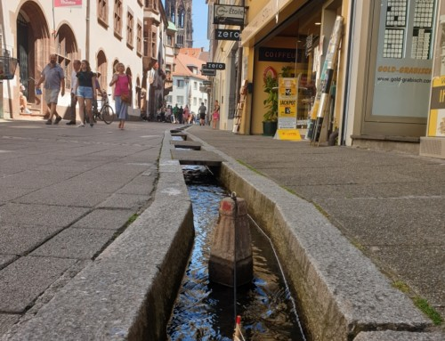 Schwarzwald dag 12: Citytrippen in Freiburg